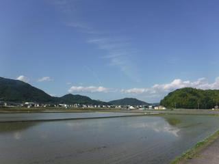 tatsuno_5.jpg